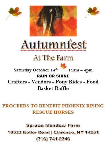 horse rescue event