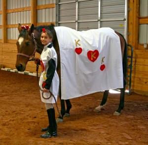 rescue horses - Justin