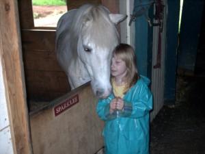 rescue horse - Sparkles