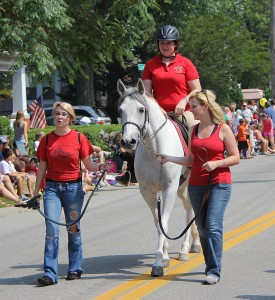 rescue horse - Zena