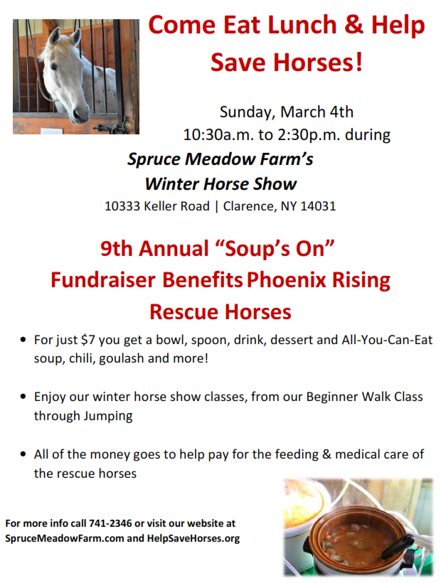 rescue horse fundraiser