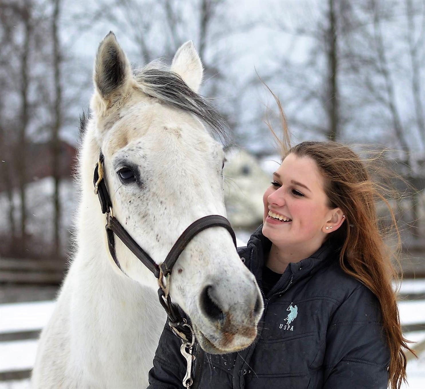 Sponsor A Rescue Horse